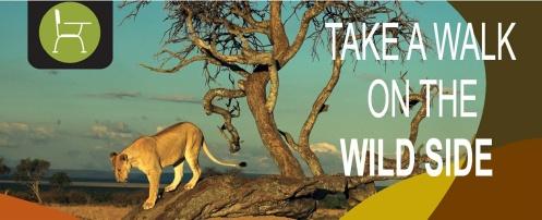 Kikulu Safari